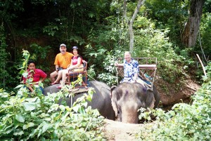 Hugh B. Fox III elephant ride
