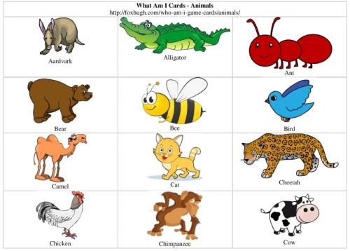 Animals on Frog Life Cycle Printable