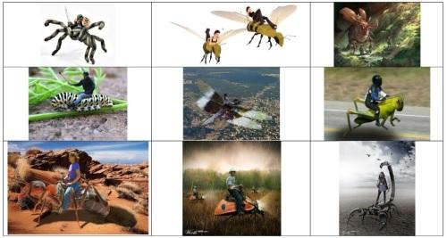 Insect Rider Collage Resized, Spider Rider, Bee Rider, Beetle Rider, Caterpillar Rider, Dragonfly Rider, Grasshopper Rider, Ant Rider, Lady Bug Rider, Scorpion Rider