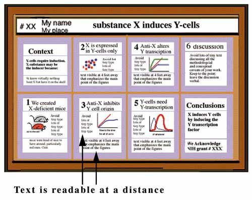 Bold dissertation software