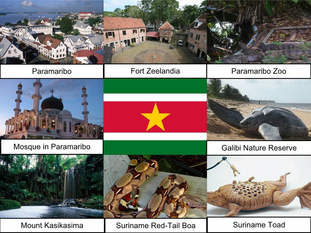 Suriname Collage Hugh Fox Iii Rockpaperscissorslizardspock