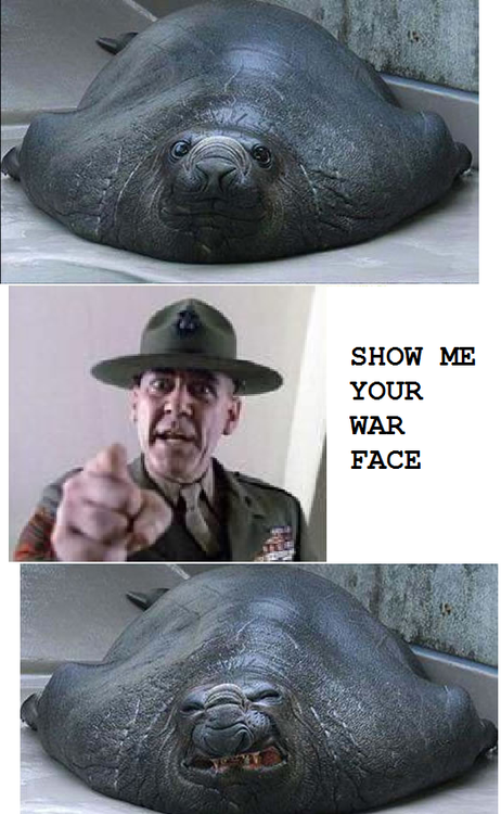 3R. Lee Ermey as Gunnery Sergeant Hartman