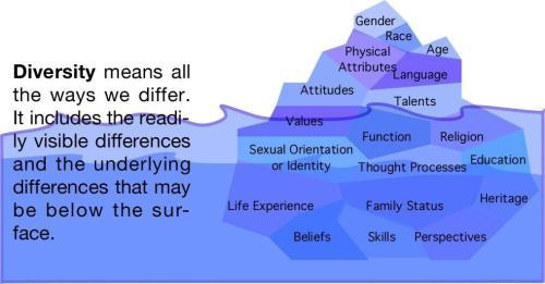 Halls Iceberg Model of Culture