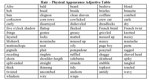 Hair – Physical Appearance Adjective Table