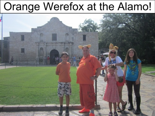 Orange Werefox in San Antonio 2