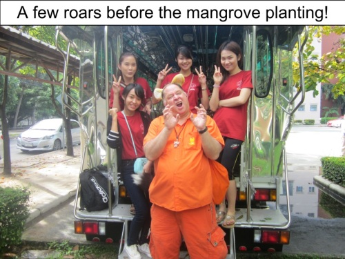 Orange Werefox Planting Mangroves 1