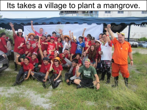 Orange Werefox Planting Mangroves 2