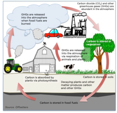 12.0) causes_of_climate_change