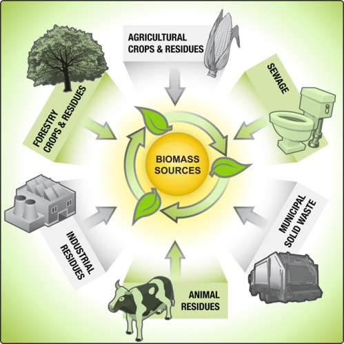 2.0) biomass