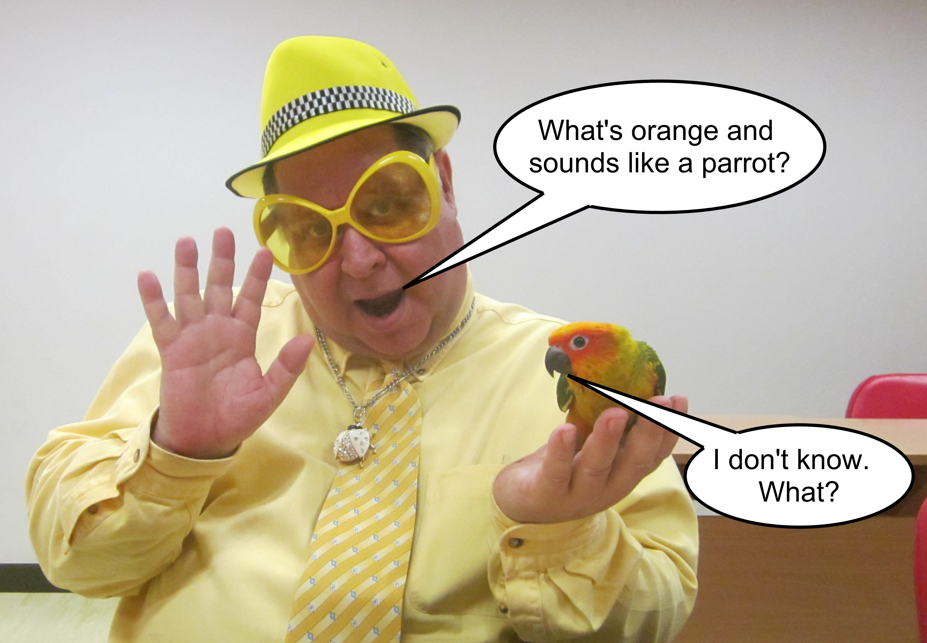 Antonym For Individuality Parrot Joke Captioned
