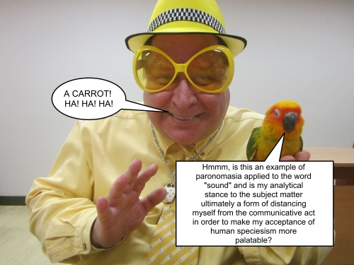 Parrot Joke 2 Captioned