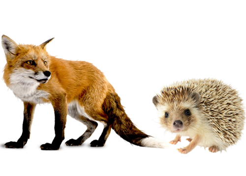 fox-and-hedgehog