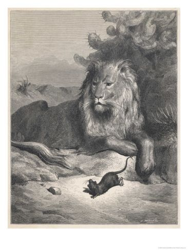 small-is-beautiful-the-lion-and-the-mouse